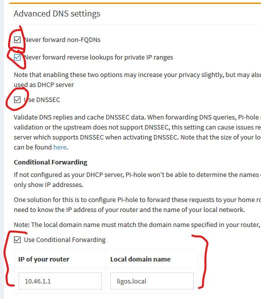 https://blog.ligos.net/images/Install-Pi-Hole/admin-settings-dns-advanced.png